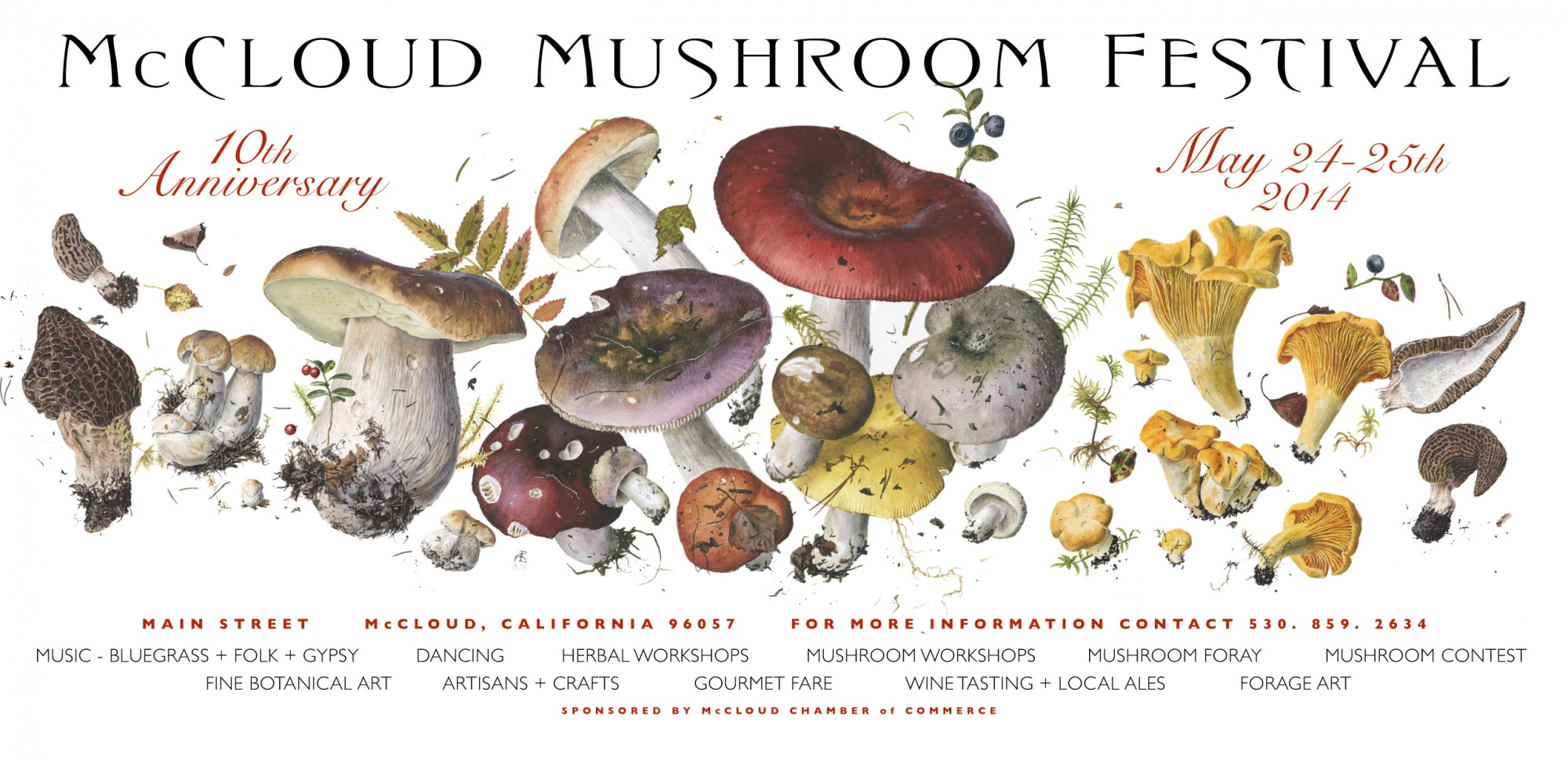 First Festival of the Year - Mushroom Fair - May 24 & 25