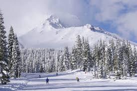 Mt Shasta ski